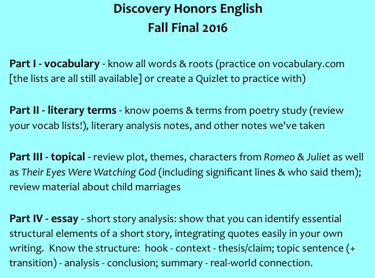 review literary terms essay